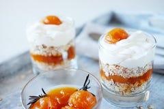 燕麦分层堆积用辣杏子果酱 健康概念的食物 免版税库存图片