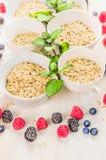 燕麦剥落在白色碗的堆用薄荷和新鲜的夏天莓果 库存照片