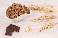 燕麦剥落或格兰诺拉麦片用包含铁和纤维,健康快餐概念的巧克力 免版税库存图片