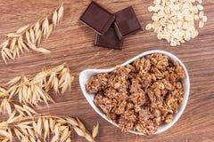 燕麦剥落或格兰诺拉麦片用包含铁和纤维,健康快餐的巧克力 库存图片