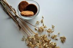 燕麦和饼干的耳朵在花瓶 免版税库存照片