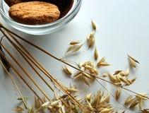 燕麦和饼干的耳朵在花瓶 免版税图库摄影