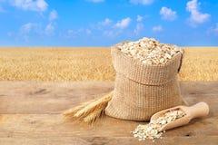 燕麦在有领域的大袋剥落在背景 库存照片