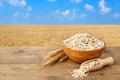 燕麦在有领域的碗剥落在背景 库存照片