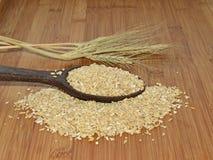 燕麦少量匙子  库存照片