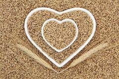 燕麦少量 库存图片