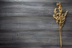 燕麦的耳朵在木头的 库存图片