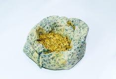 燕麦种子在袋子的 准备播种燕麦五谷  免版税库存照片
