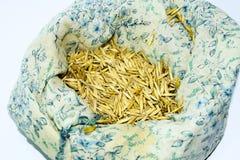 燕麦种子在袋子的 准备播种燕麦五谷  库存照片