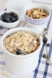 燕麦粥、蓝莓和坚果 库存图片