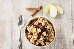 燕麦粥早餐谷物用果子和桂香 免版税库存照片
