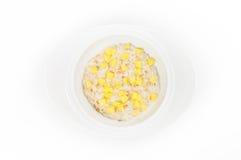燕麦粥用在白色隔绝的白色碗的芒果 免版税库存照片