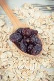 燕麦粥用干蔓越桔当来源碳水化合物、维生素和饮食纤维,健康和滋补吃的概念 库存照片