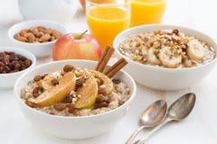 燕麦粥用新鲜的苹果、葡萄干和桂香早餐 免版税库存照片