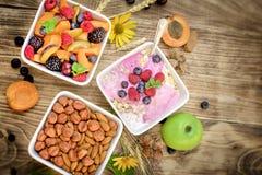 燕麦粥用果子和酸奶和水果沙拉-健康吃健康食物 免版税库存图片