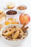 燕麦粥用苹果、葡萄干、桂香和成份在白色 图库摄影