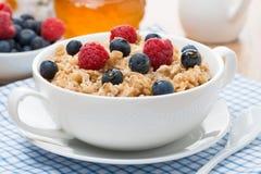 燕麦粥用莓果 库存图片