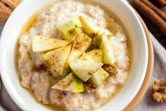 燕麦粥粥用苹果和桂香 库存照片