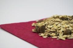 燕麦粥 免版税图库摄影