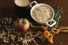 燕麦耳朵词根和燕麦剥落在一个白色罐、万寿菊花和杯子牛奶和苹果在黑褐色木头桌上 顶视图 燕麦f 图库摄影