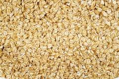 燕麦背景 免版税库存图片