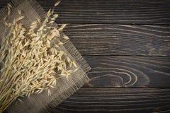 燕麦谷粒 免版税库存照片
