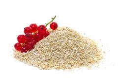 燕麦麸皮用红浆果 库存照片
