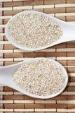 燕麦麸皮 图库摄影