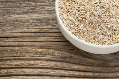 燕麦麸皮 免版税库存图片