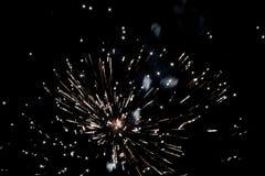 爆炸在黑暗的天空的烟花 免版税库存照片