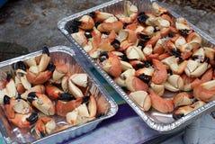 爪螃蟹石头 图库摄影