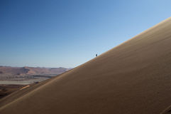 爬上大爸爸沙丘,沙漠风景,纳米比亚的一个人 库存图片