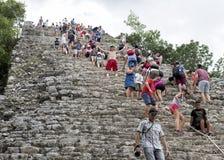 爬上Nohoch Mul金字塔在科巴破坏的下来的人们 免版税库存图片