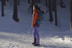爬山者在森林里 免版税图库摄影