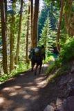 爬山过夜瑞尼尔山国家公园 免版税图库摄影