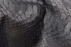 爬行动物蛇纹理特写镜头,时尚之字形snakeskin Python图片 图库摄影