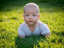 爬行在绿色草坪的婴孩 免版税库存照片