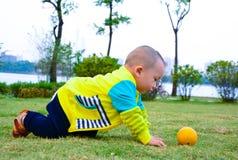 爬行在草坪的小婴孩 库存图片