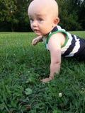 爬行在草的小男孩 库存图片