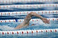 爬行游泳者 免版税库存照片