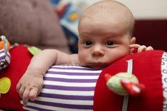 爬行的卷的沉思婴孩 免版税库存图片