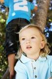 爬逗人喜爱的结构树的男孩 库存图片