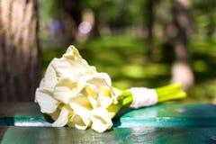 爱、约会或者婚礼之日概念-花束白色水芋属开花 免版税库存图片
