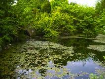 爱丁堡绿色湖公园  库存图片