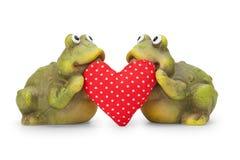 爱上重点的逗人喜爱的愉快的青蛙 免版税图库摄影