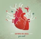 爱与心脏和花,华伦泰的背景 免版税库存照片
