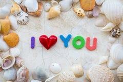 爱与海壳框架的概念并且措辞我爱你 免版税库存图片