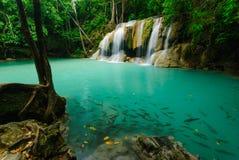 爱侣湾瀑布,北碧,泰国 库存照片