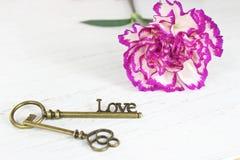 爱和俏丽的花背景的情人节钥匙 库存照片