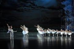 爱和童话经典之作芭蕾天鹅湖 免版税库存照片